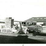 Yard 1980`s